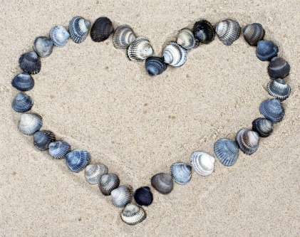 Seashells and Pattering Hearts